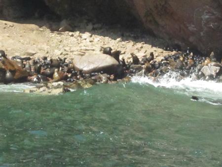 paracas32